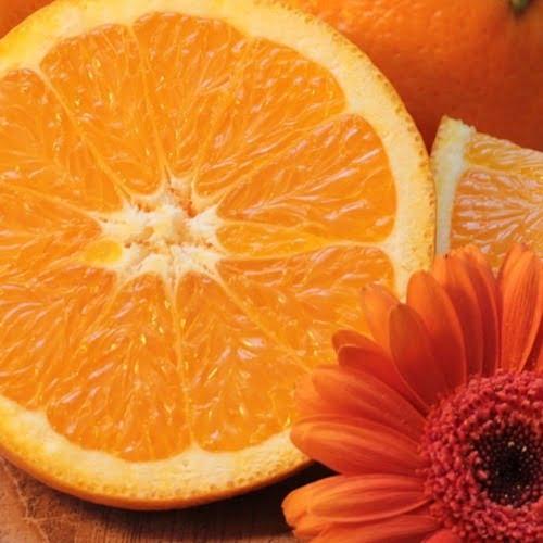 extrato de laranja